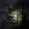 Espejo victoriano - relato - terror - La larga noche del cazador