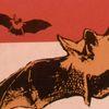 Historia natural de los vampiros - Anthony Masters - Brugera